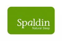 SPALDIN-dig